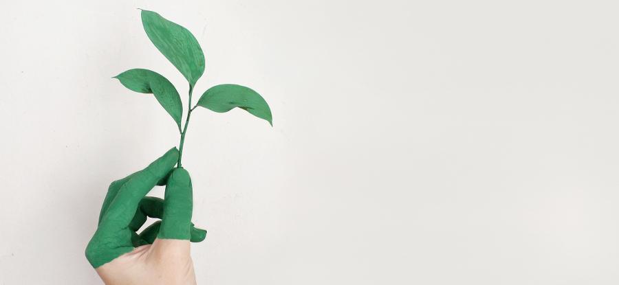 ecoinnovation_ecology_circular_economy